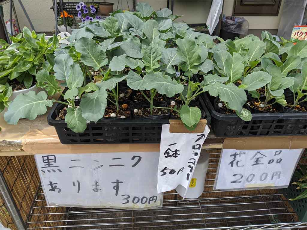 Unmanned Vegetable Stands