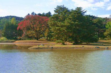 Hiraizumi Iwate
